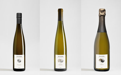 Christ-mittnacht-wines